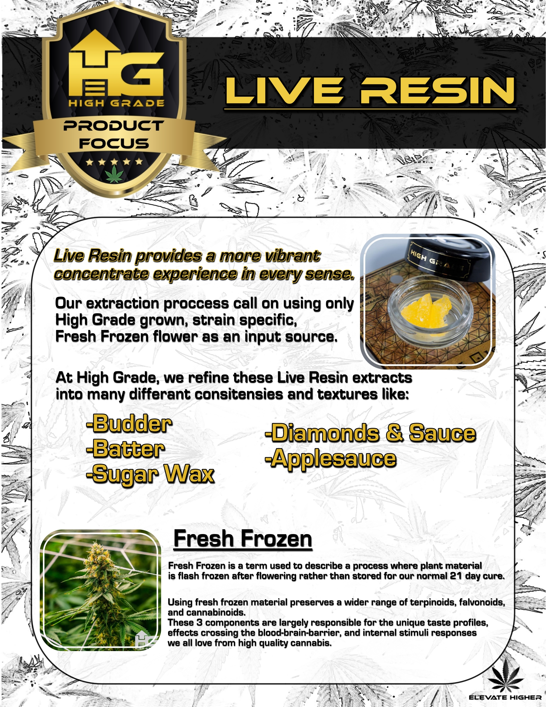 Live Resins: Maximum Vibrance in Taste and Effects